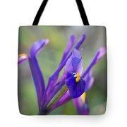 Spring Iris Three Tote Bag
