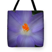 Spring Is All Around Tote Bag