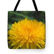 Spring Is In Bloom Tote Bag