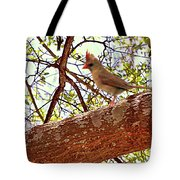 Spring Is In The Air Tote Bag