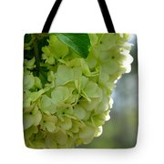Spring Is In The Air -vines Botanical Garden Tote Bag