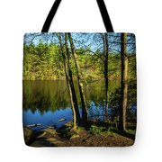 Spring It The Woods Tote Bag