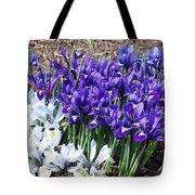 Spring Japanese Iris Tote Bag