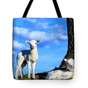 Spring Lambs Evening Light Tote Bag