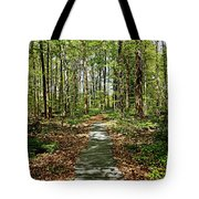 Spring Light And Shadow Tote Bag