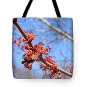 Spring Maple Blossoms Tote Bag