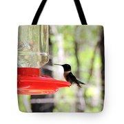 Spring Migration Hummingbird Tote Bag