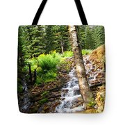 Spring Of Water Tote Bag
