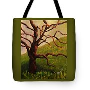 Spring On Figueroa Mt. Tote Bag