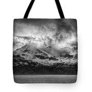 Spring On Glacier Bay Tote Bag