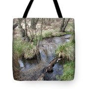 Spring On The Sherbrook Tote Bag