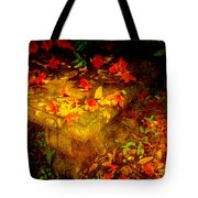Spring Or Autumn Tote Bag