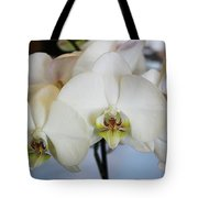 Spring Orchids Tote Bag