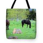 Spring Pastures Tote Bag