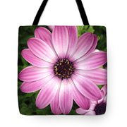 Spring Perfection Tote Bag