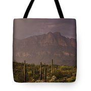Spring Rain In The Sonoran  Tote Bag