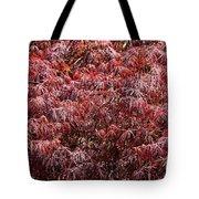 Spring Reds Tote Bag