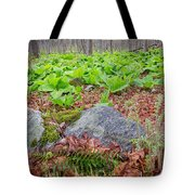 Spring Renewal Tote Bag