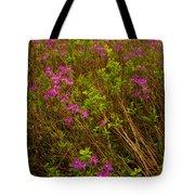 Spring Rhodora Blossoms Tote Bag