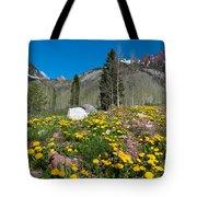 Spring Rocky Mountain Landscape Tote Bag
