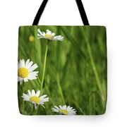 Spring Scene White Wild Flowers Tote Bag
