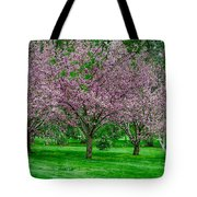 Spring Series #20 Tote Bag