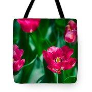Spring Series #28 Tote Bag