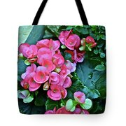 Spring Show 17 Begonias And Roses Tote Bag