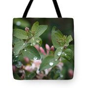 Spring Showers 5 Tote Bag