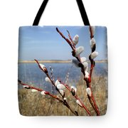 Spring Sign Tote Bag