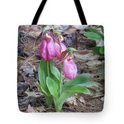 Spring Slippers Tote Bag