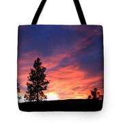 Spring Spectacle Tote Bag