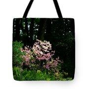 Spring Spotlight Tote Bag