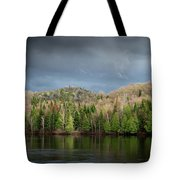 Spring Storm Coming Tote Bag