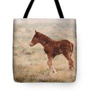 Spring Storm Foal Tote Bag