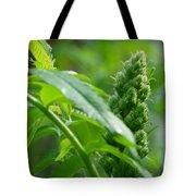 Spring Sumac Tote Bag