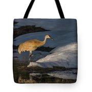 Spring Sunset With Sandhill Crane Tote Bag