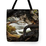 Spring Textures Tote Bag