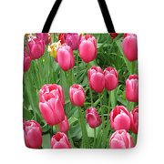 Spring Time Floral Tulips Galore Tote Bag