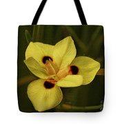 Spring Time In Florida Tote Bag