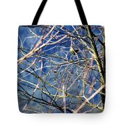 Spring To Life Tote Bag