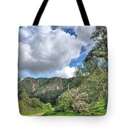 Spring Trail In The Canyon Tote Bag