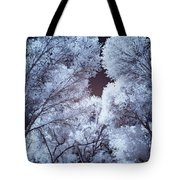 Spring Trees And Shadows Tote Bag