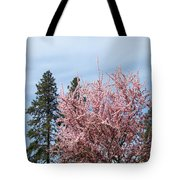 Spring Trees Bossoming Landscape Art Prints Pink Blossoms Clouds Sky  Tote Bag
