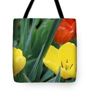 Spring Tulips 144 Tote Bag