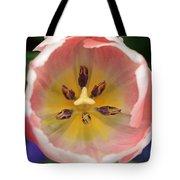 Spring Tulips 174 Tote Bag