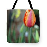Spring Tulips 179 Tote Bag