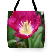 Spring Tulips 186 Tote Bag