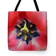 Spring Tulips 203 Tote Bag