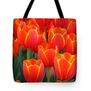 Spring Tulips 206 Tote Bag
